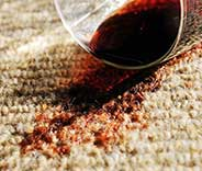 Affordable Carpet Cleaning Near Malibu
